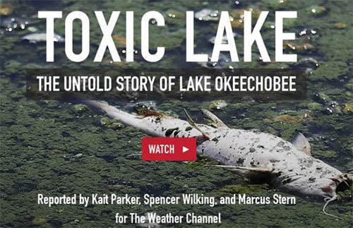 Toxic Lake Okeechobee